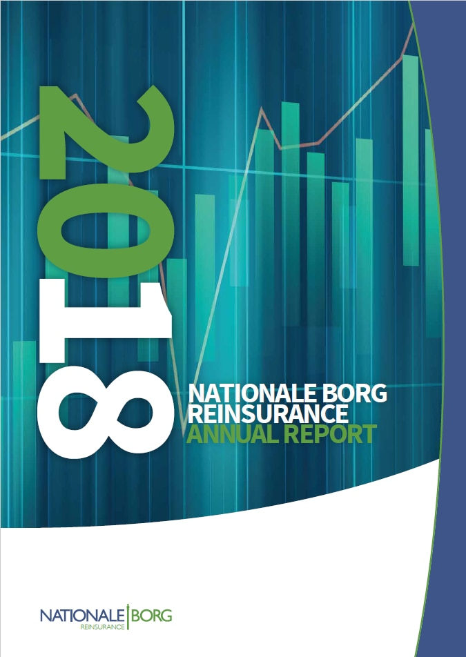 NB Re Annual Report 2018